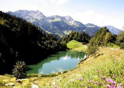 walsertal_sommer_seewaldsee